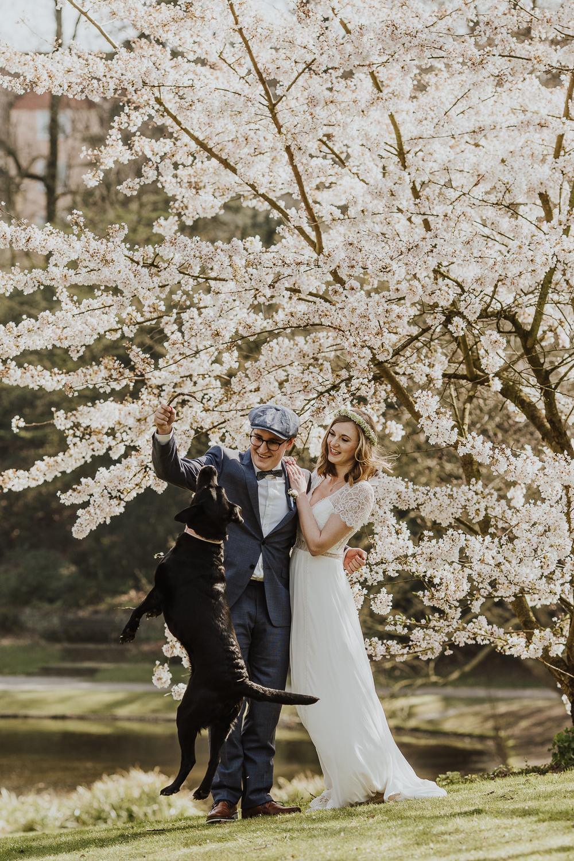 Brautpaar mit Hund in Kirschblüten
